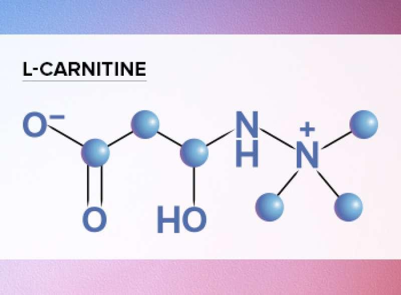 l carnitine yorumları
